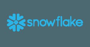 snowflake partner nederland